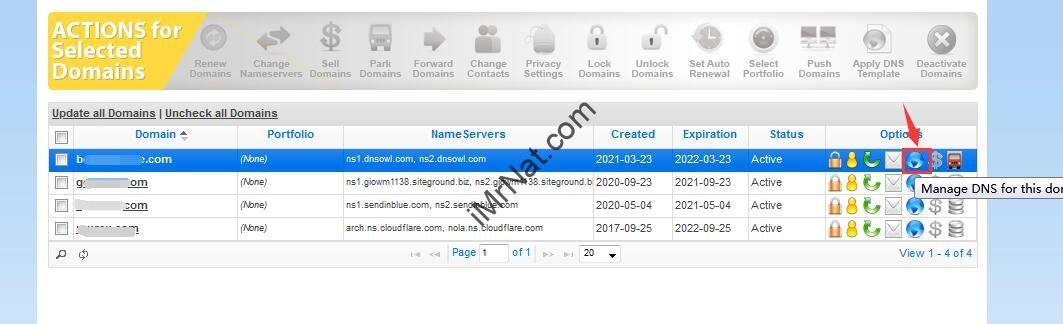 manage DNS for domain